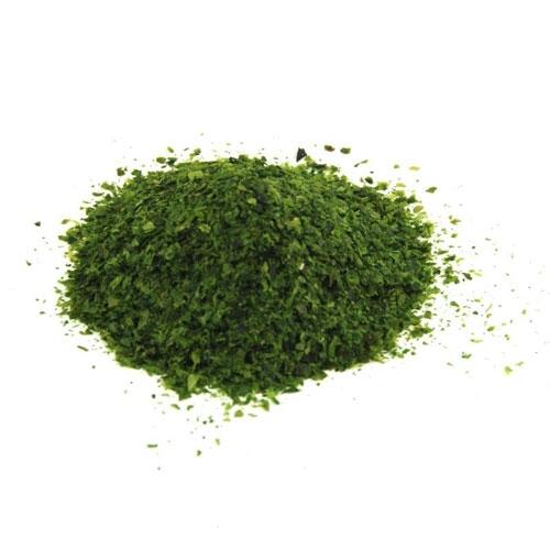 Alghe in polvere